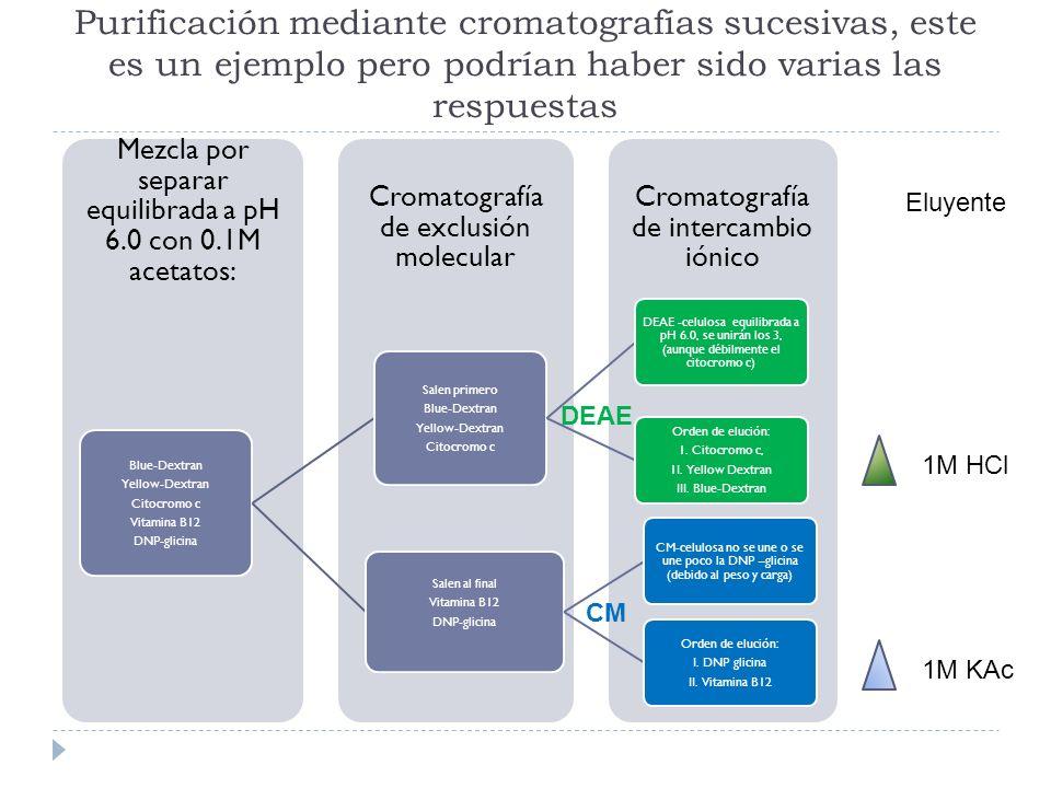 Purificación mediante cromatografías sucesivas, este es un ejemplo pero podrían haber sido varias las respuestas