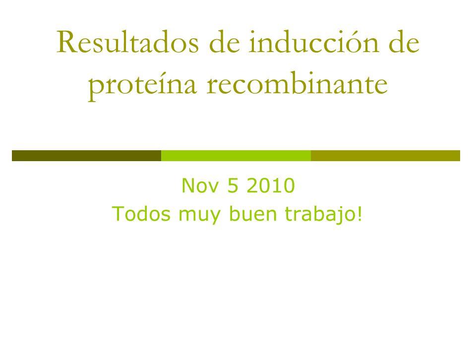 Resultados de inducción de proteína recombinante