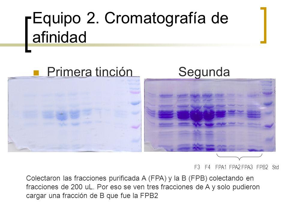 Equipo 2. Cromatografía de afinidad