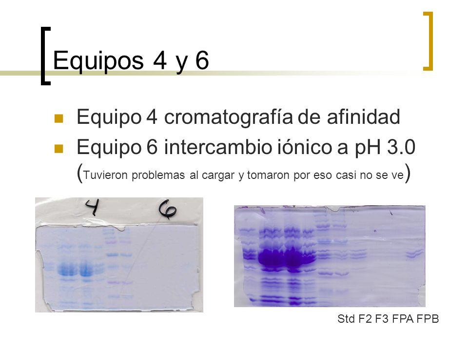 Equipos 4 y 6 Equipo 4 cromatografía de afinidad