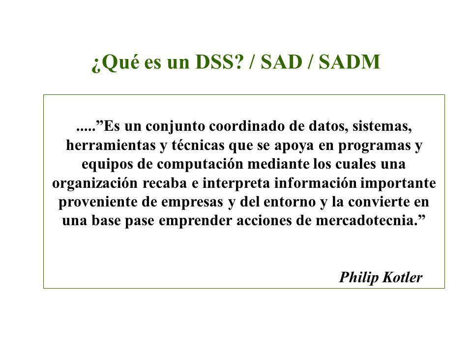 ¿Qué es un DSS / SAD / SADM