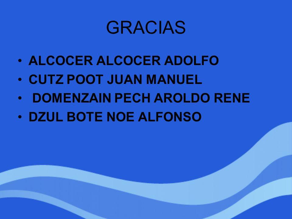 GRACIAS ALCOCER ALCOCER ADOLFO CUTZ POOT JUAN MANUEL