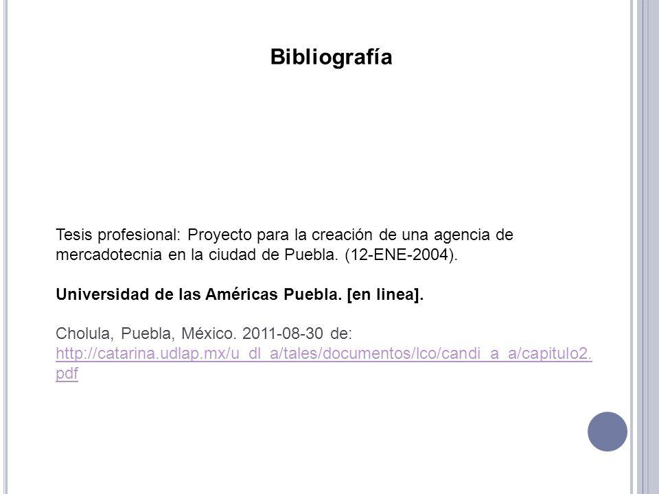 Bibliografía Tesis profesional: Proyecto para la creación de una agencia de mercadotecnia en la ciudad de Puebla. (12-ENE-2004).