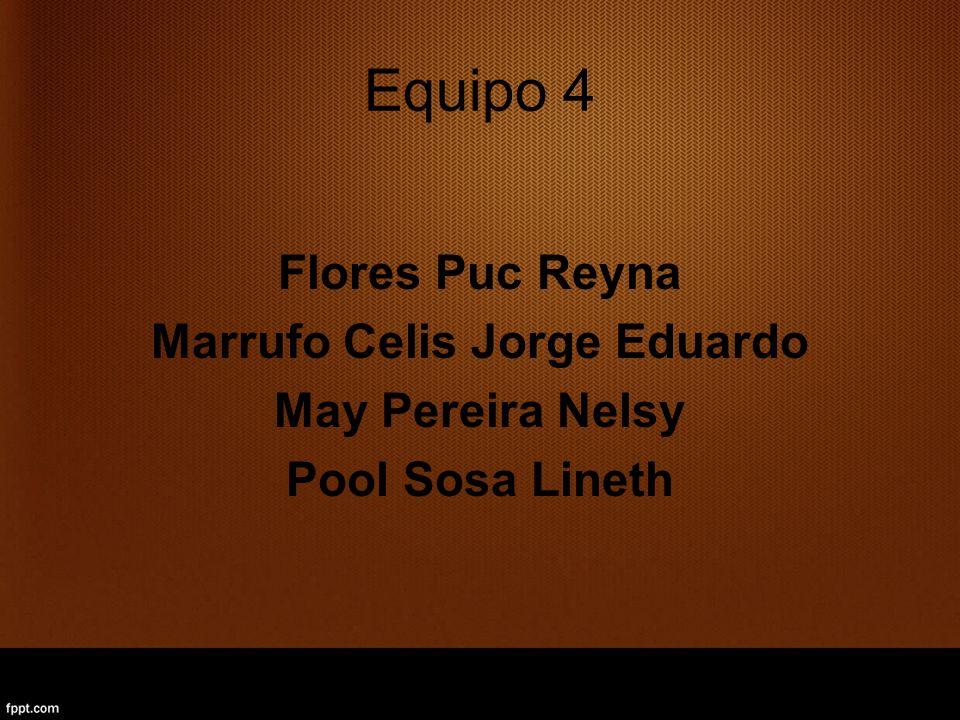 Equipo 4 Flores Puc Reyna Marrufo Celis Jorge Eduardo May Pereira Nelsy Pool Sosa Lineth