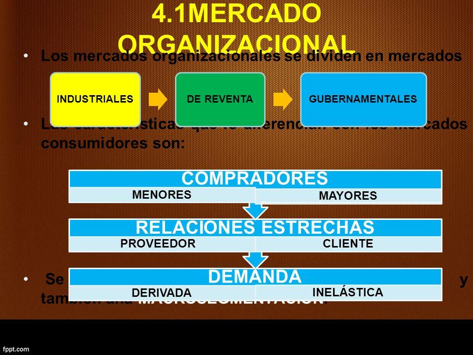 4.1MERCADO ORGANIZACIONAL
