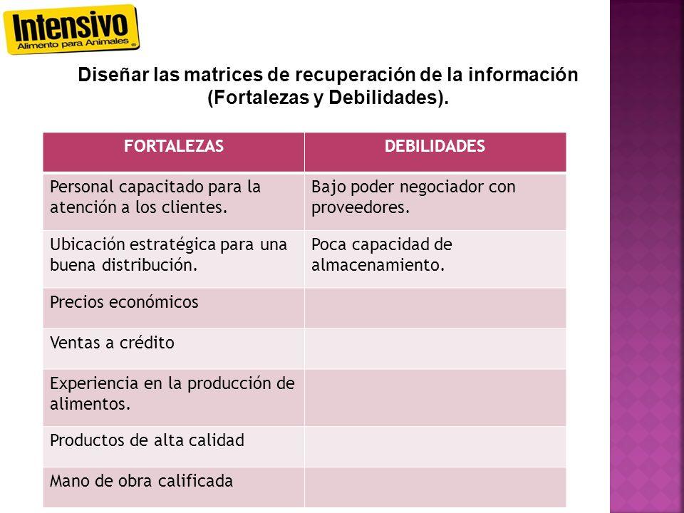 Diseñar las matrices de recuperación de la información (Fortalezas y Debilidades).