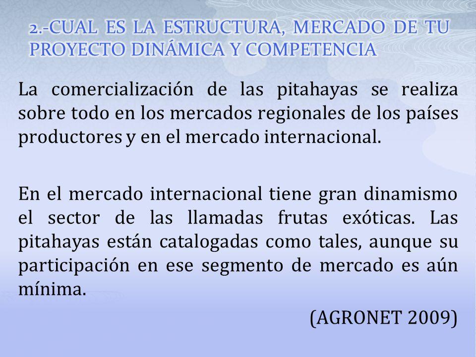 2.-CUAL ES LA ESTRUCTURA, MERCADO DE TU PROYECTO DINÁMICA Y COMPETENCIA