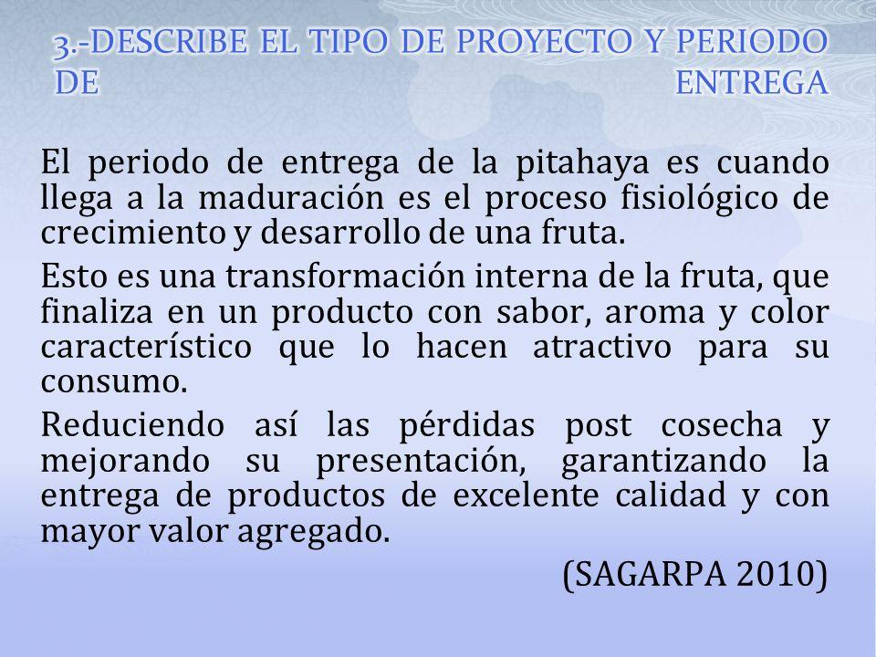 3.-DESCRIBE EL TIPO DE PROYECTO Y PERIODO DE ENTREGA