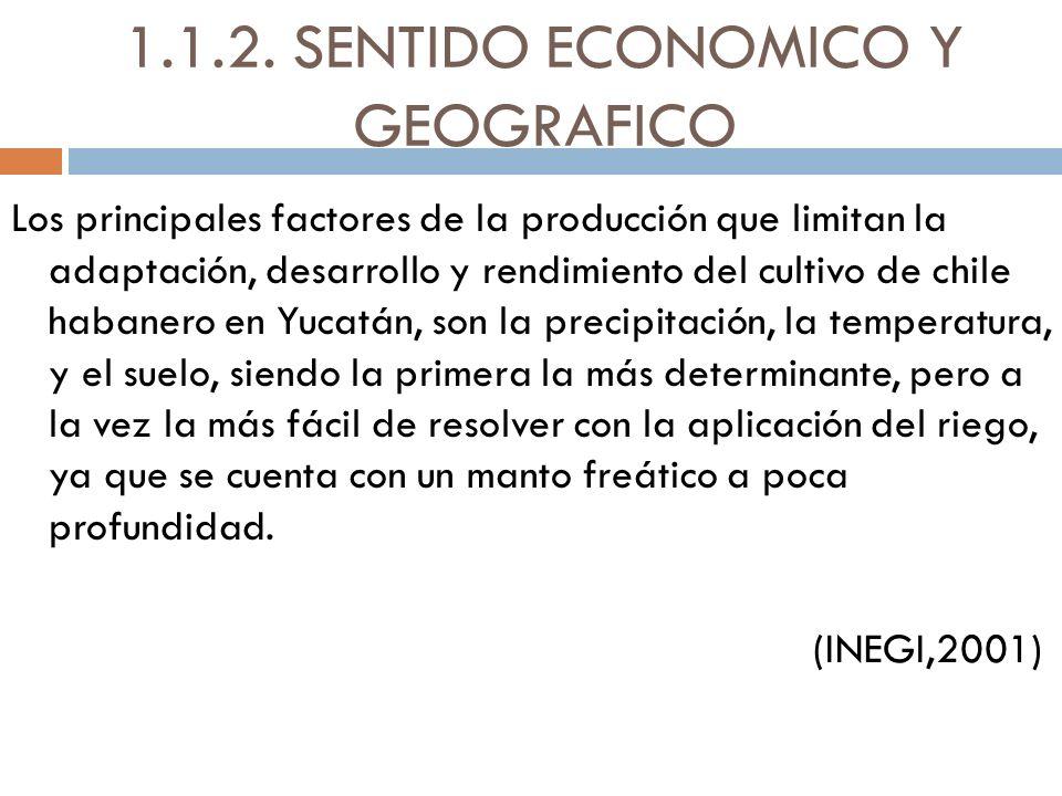 1.1.2. SENTIDO ECONOMICO Y GEOGRAFICO