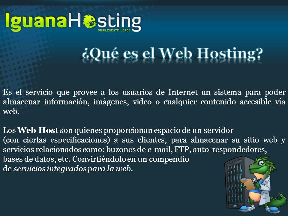 ¿Qué es el Web Hosting