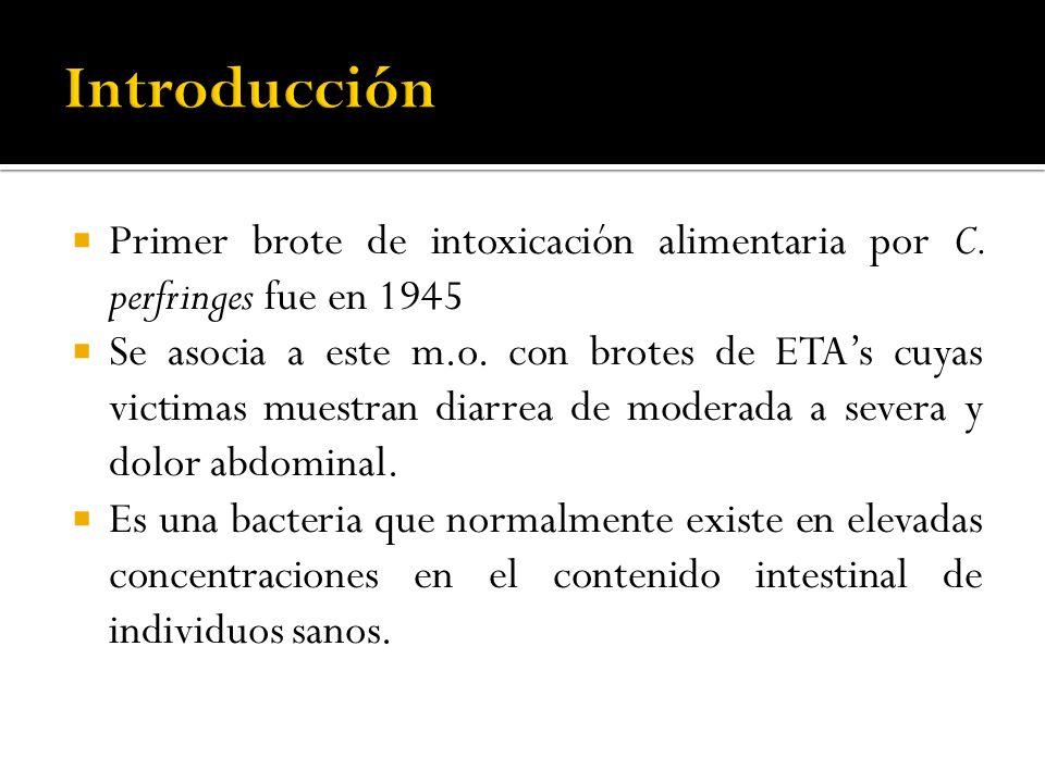 Introducción Primer brote de intoxicación alimentaria por C. perfringes fue en 1945.