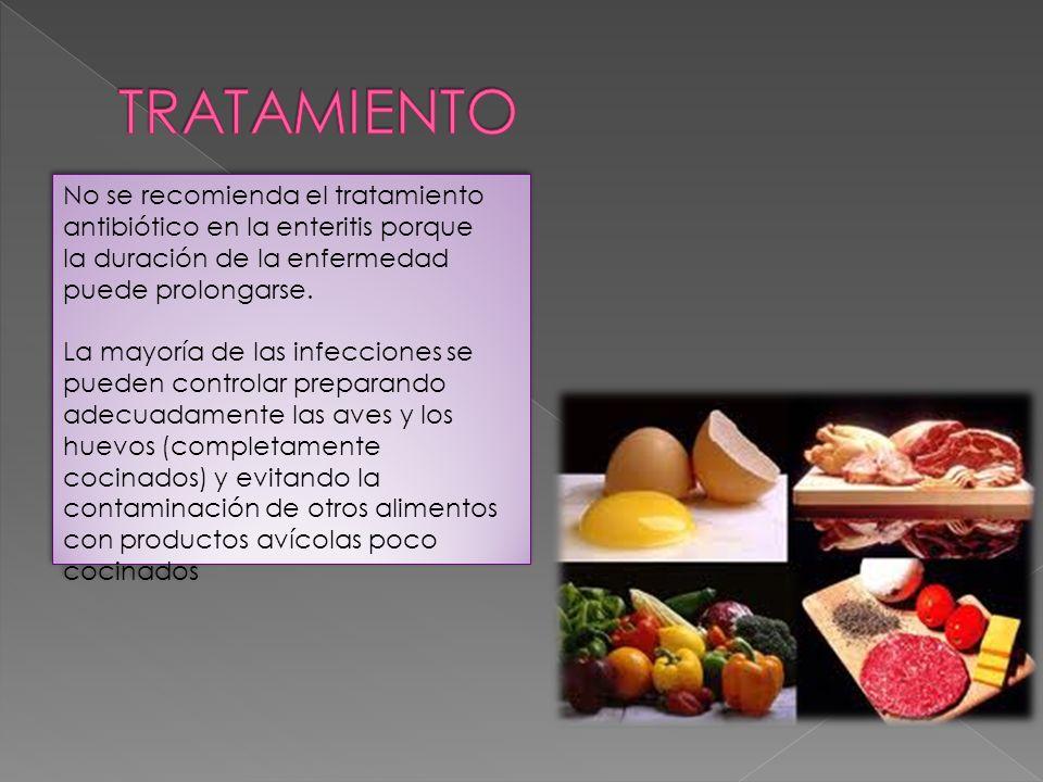 TRATAMIENTO No se recomienda el tratamiento antibiótico en la enteritis porque. la duración de la enfermedad puede prolongarse.