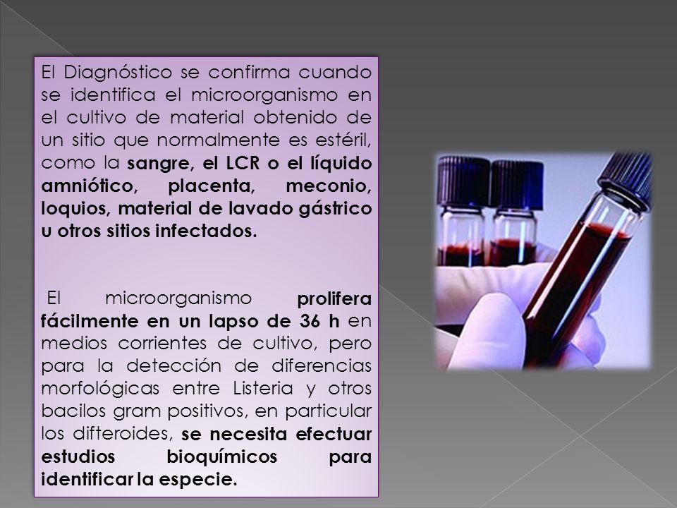 El Diagnóstico se confirma cuando se identifica el microorganismo en el cultivo de material obtenido de un sitio que normalmente es estéril, como la sangre, el LCR o el líquido amniótico, placenta, meconio, loquios, material de lavado gástrico u otros sitios infectados.