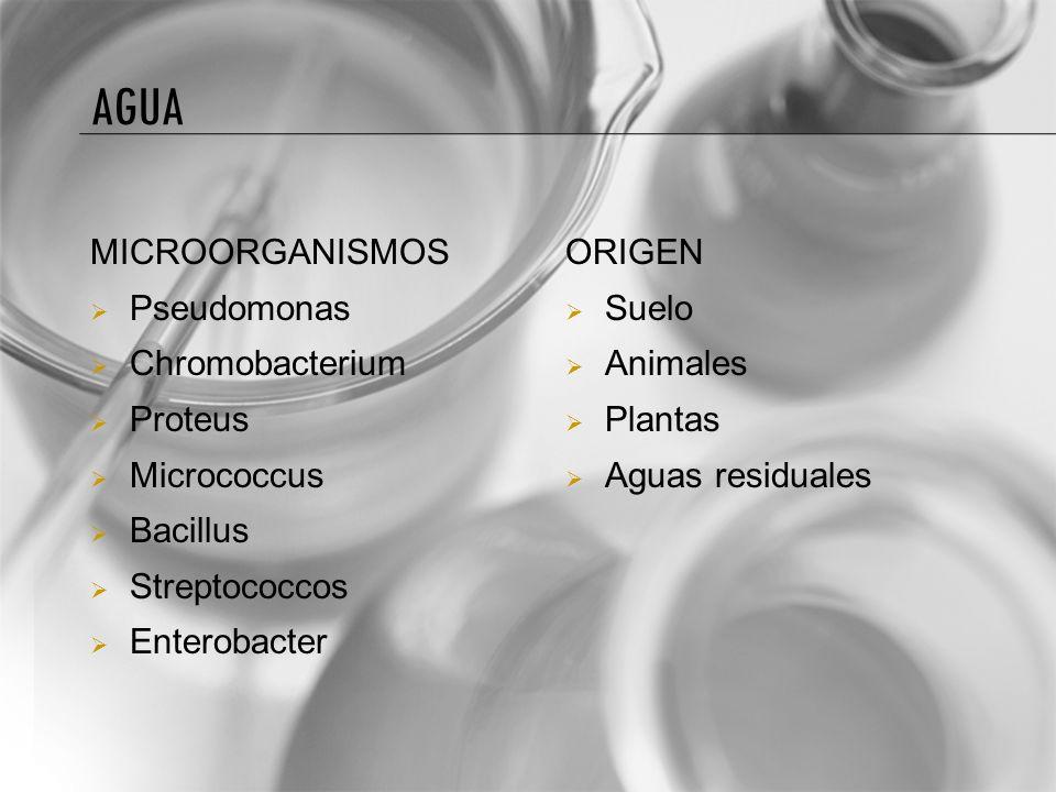 Agua MICROORGANISMOS Pseudomonas Chromobacterium Proteus Micrococcus