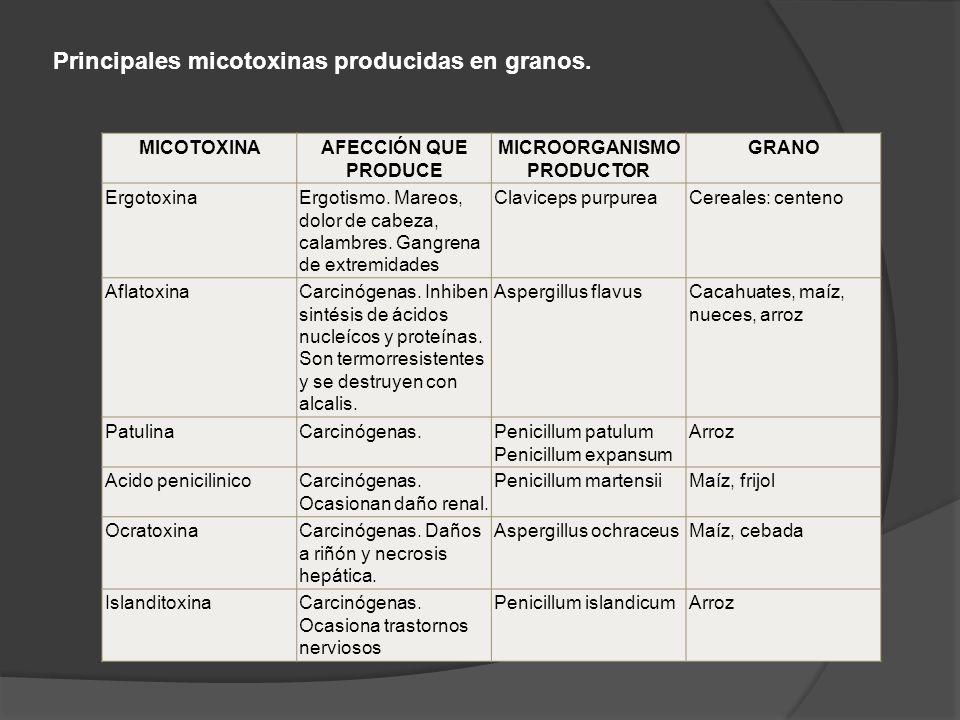 Principales micotoxinas producidas en granos.