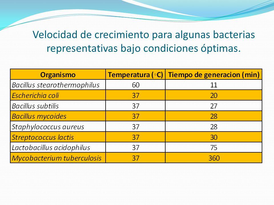 Velocidad de crecimiento para algunas bacterias representativas bajo condiciones óptimas.