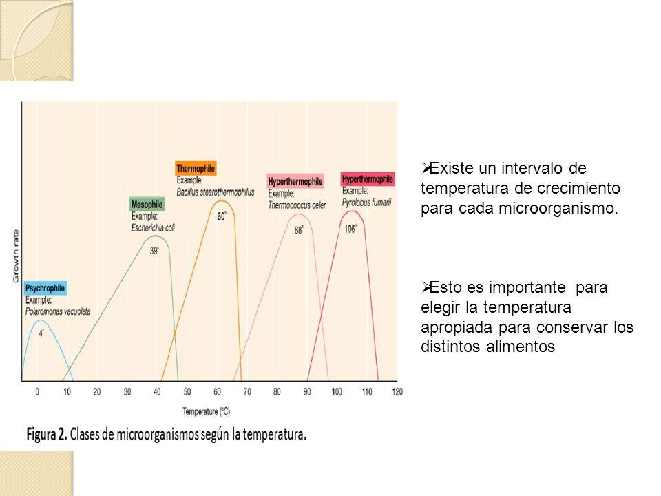 Existe un intervalo de temperatura de crecimiento para cada microorganismo.
