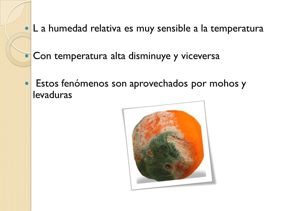 L a humedad relativa es muy sensible a la temperatura