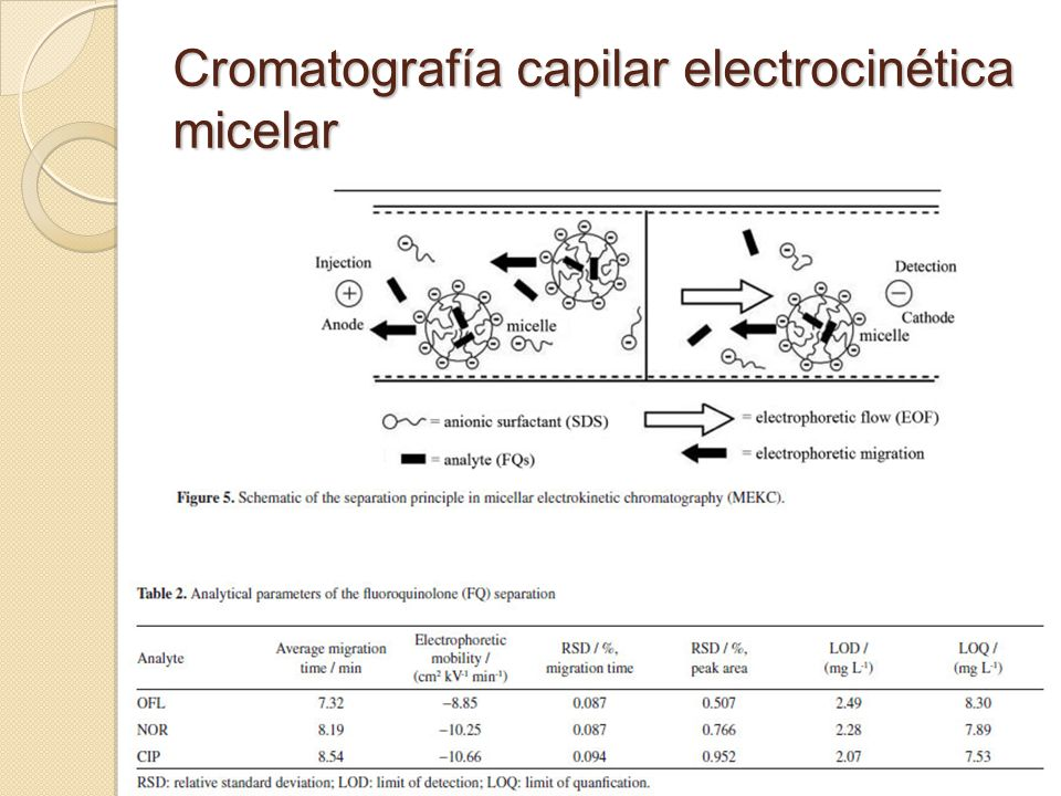 Cromatografía capilar electrocinética micelar