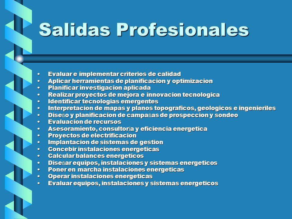 Salidas Profesionales