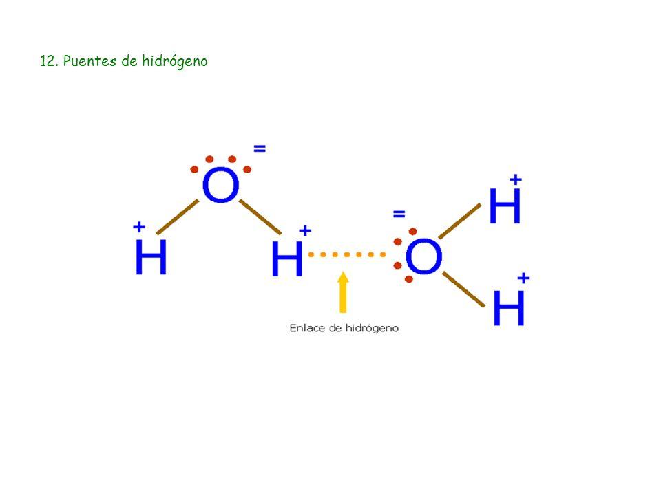 12. Puentes de hidrógeno