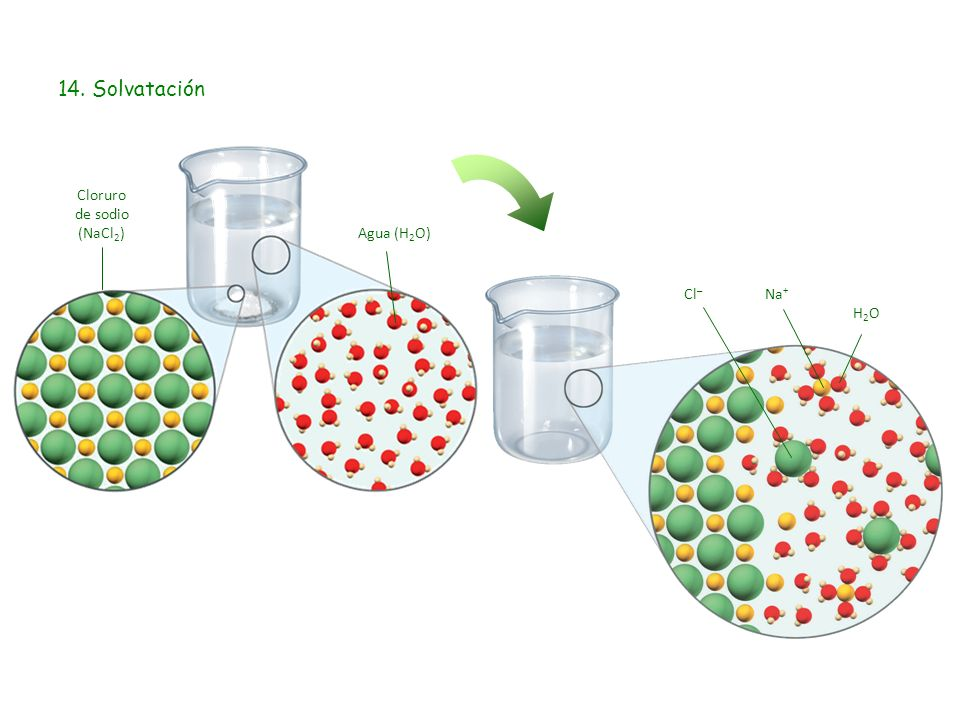 Cloruro de sodio (NaCl2)