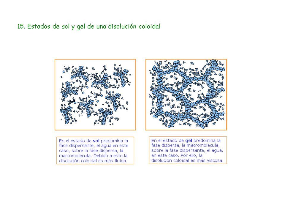 15. Estados de sol y gel de una disolución coloidal