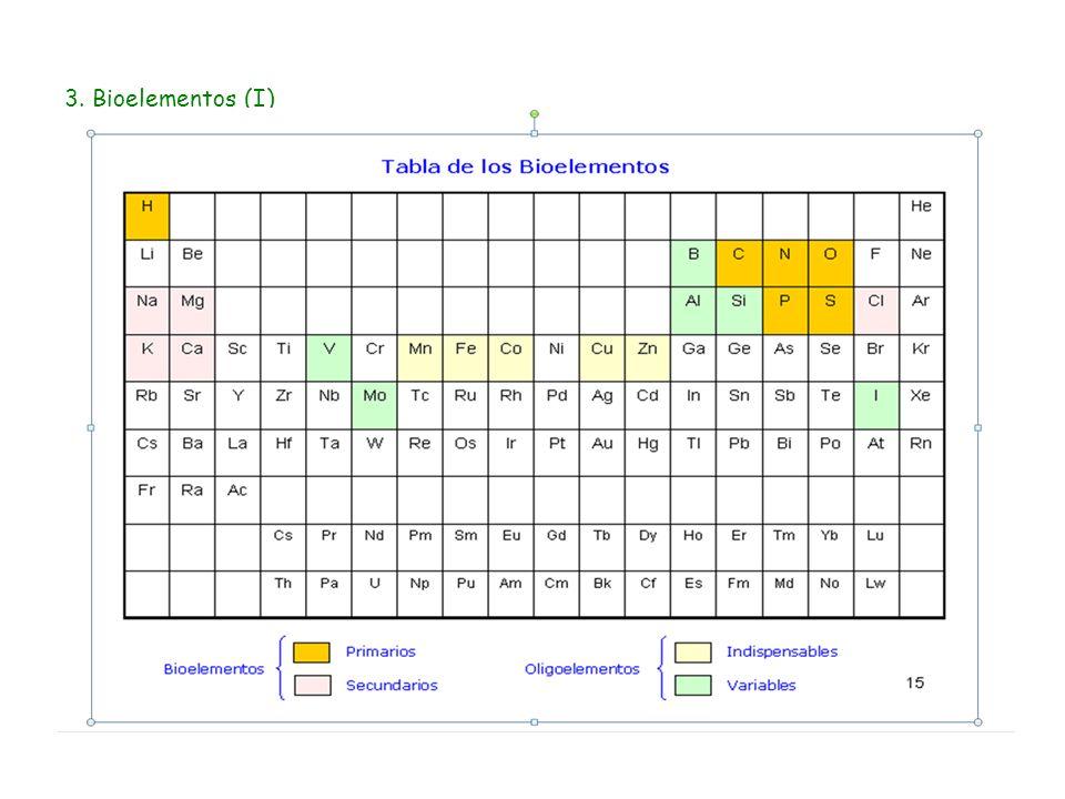 3. Bioelementos (I)