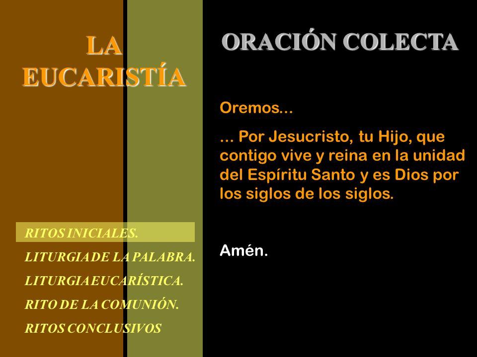 ORACIÓN COLECTA Oremos...