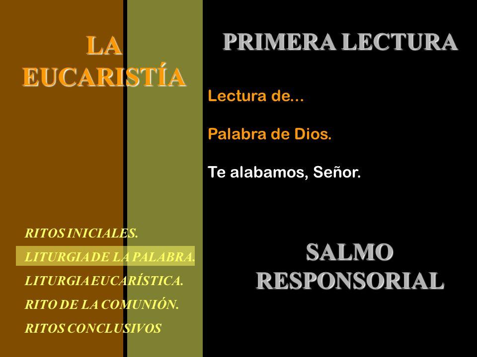 PRIMERA LECTURA SALMO RESPONSORIAL