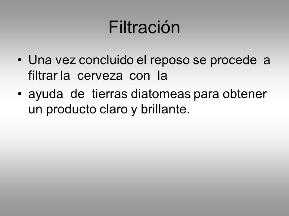 Filtración Una vez concluido el reposo se procede a filtrar la cerveza con la.