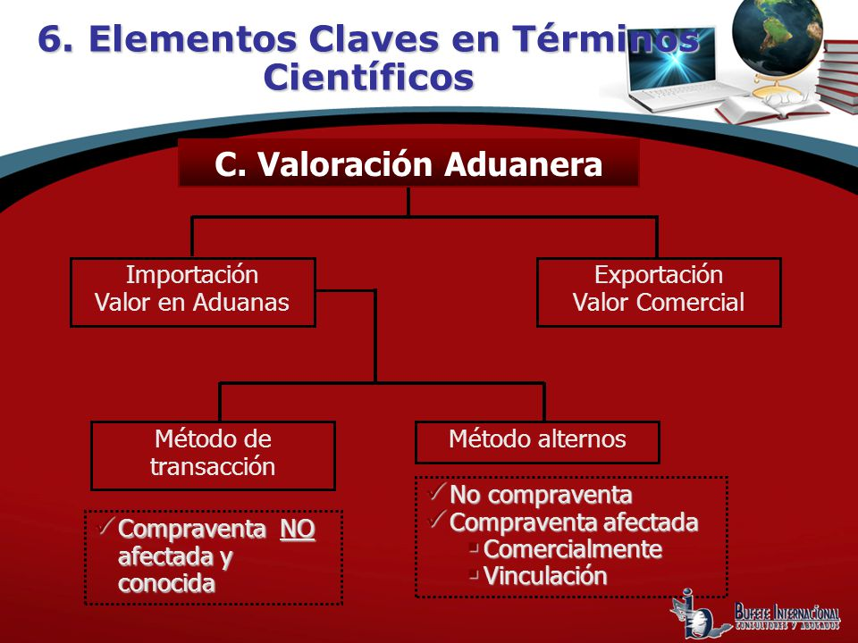 6. Elementos Claves en Términos Científicos