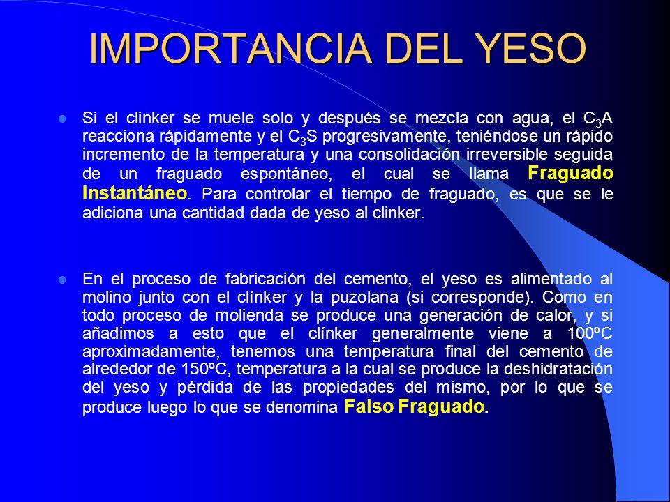IMPORTANCIA DEL YESO
