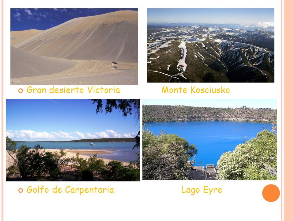 Gran desierto Victoria Monte Kosciusko