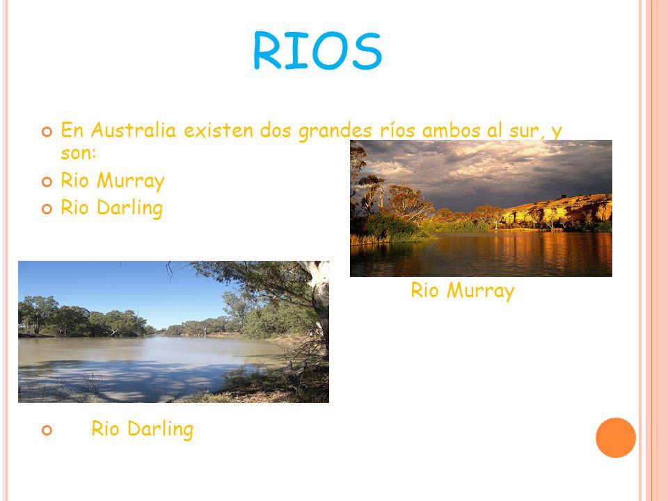 RIOS En Australia existen dos grandes ríos ambos al sur, y son: