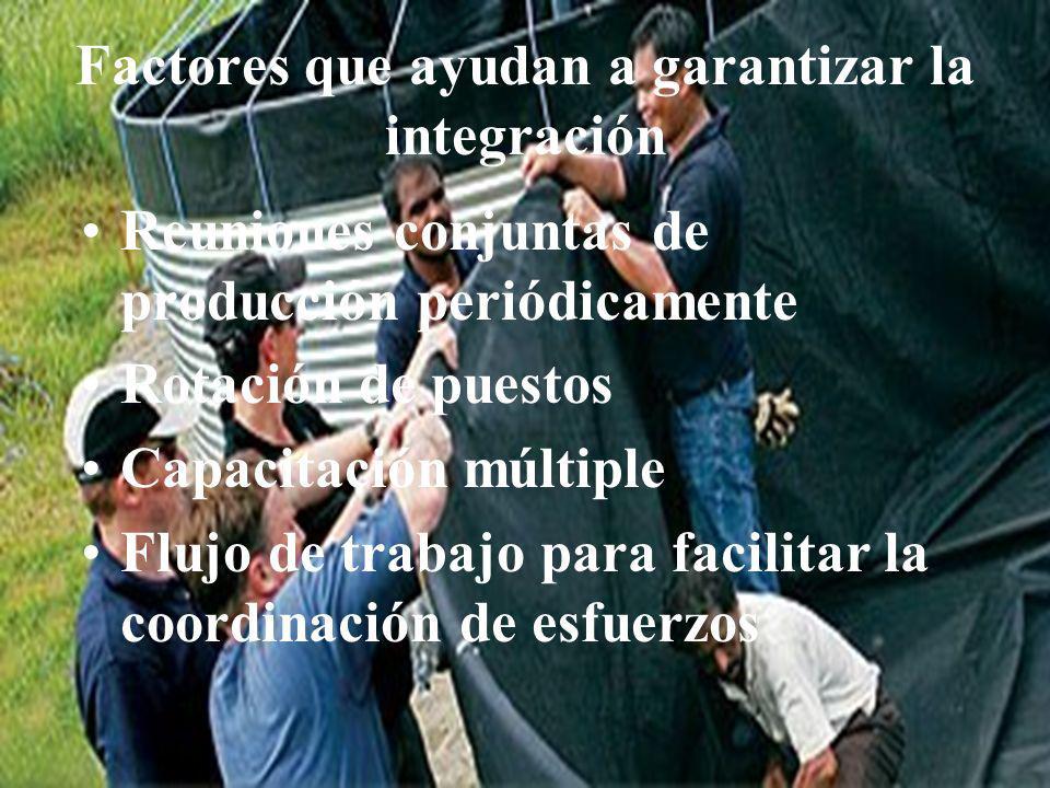Factores que ayudan a garantizar la integración