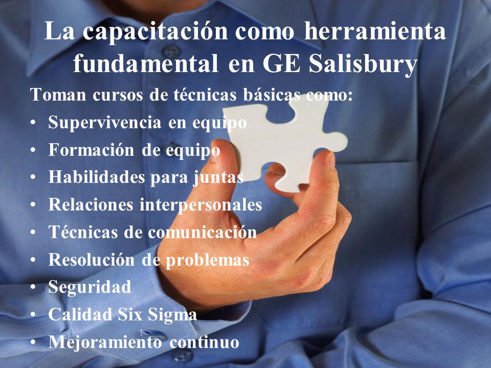 La capacitación como herramienta fundamental en GE Salisbury