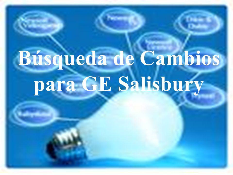 Búsqueda de Cambios para GE Salisbury