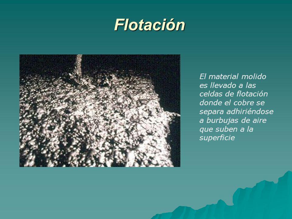 Flotación El material molido es llevado a las celdas de flotación donde el cobre se separa adhiriéndose a burbujas de aire que suben a la superficie.