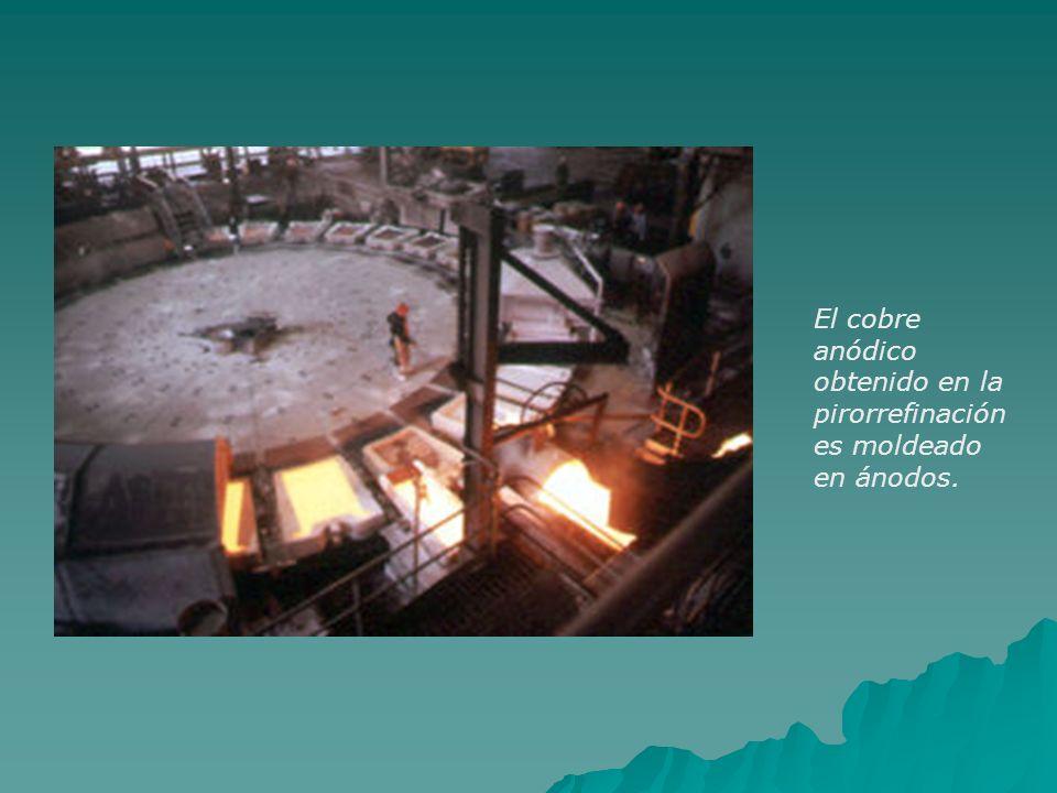 El cobre anódico obtenido en la pirorrefinación es moldeado en ánodos.