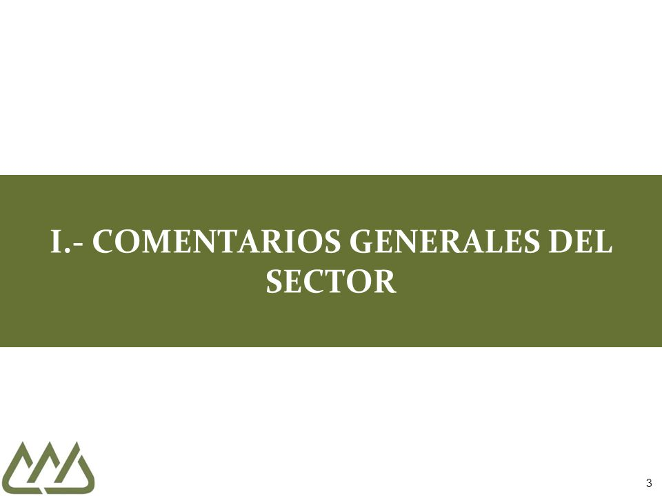I.- COMENTARIOS GENERALES DEL SECTOR