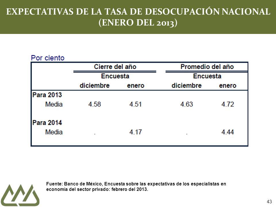 EXPECTATIVAS DE LA TASA DE DESOCUPACIÓN NACIONAL (ENERO DEL 2013)