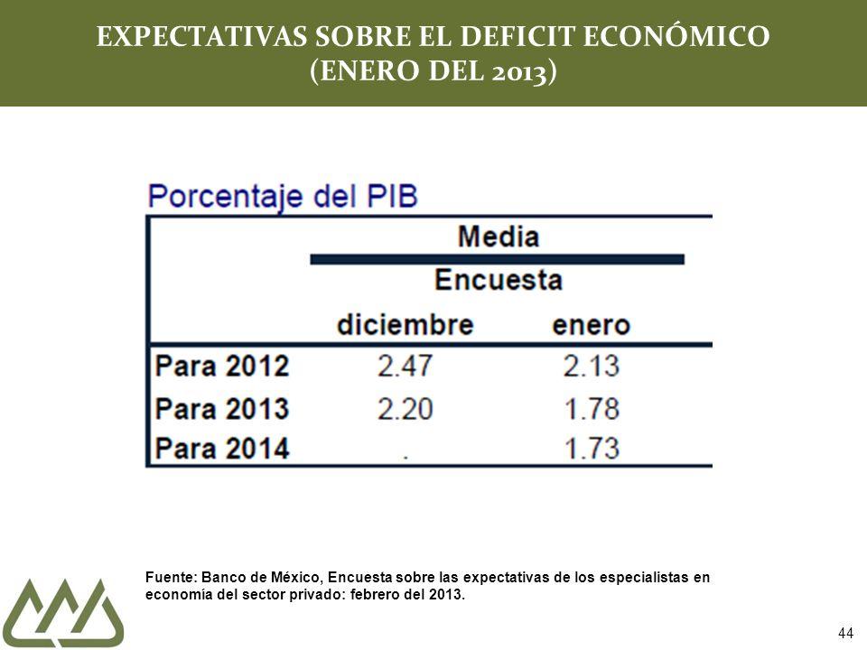 EXPECTATIVAS SOBRE EL DEFICIT ECONÓMICO (ENERO DEL 2013)