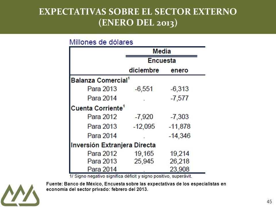 EXPECTATIVAS SOBRE EL SECTOR EXTERNO (ENERO DEL 2013)