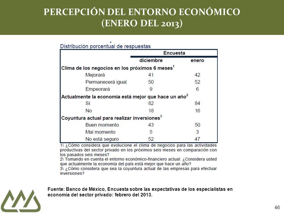 PERCEPCIÓN DEL ENTORNO ECONÓMICO (ENERO DEL 2013)