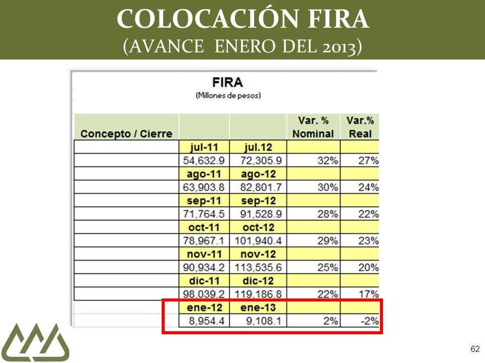 COLOCACIÓN FIRA (AVANCE ENERO DEL 2013)