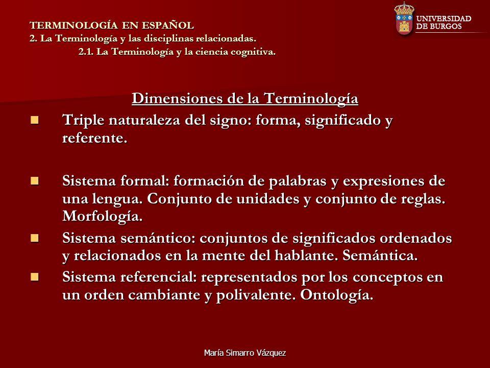 Dimensiones de la Terminología
