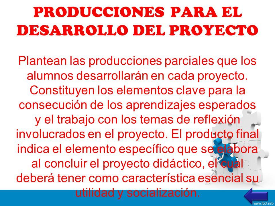PRODUCCIONES PARA EL DESARROLLO DEL PROYECTO