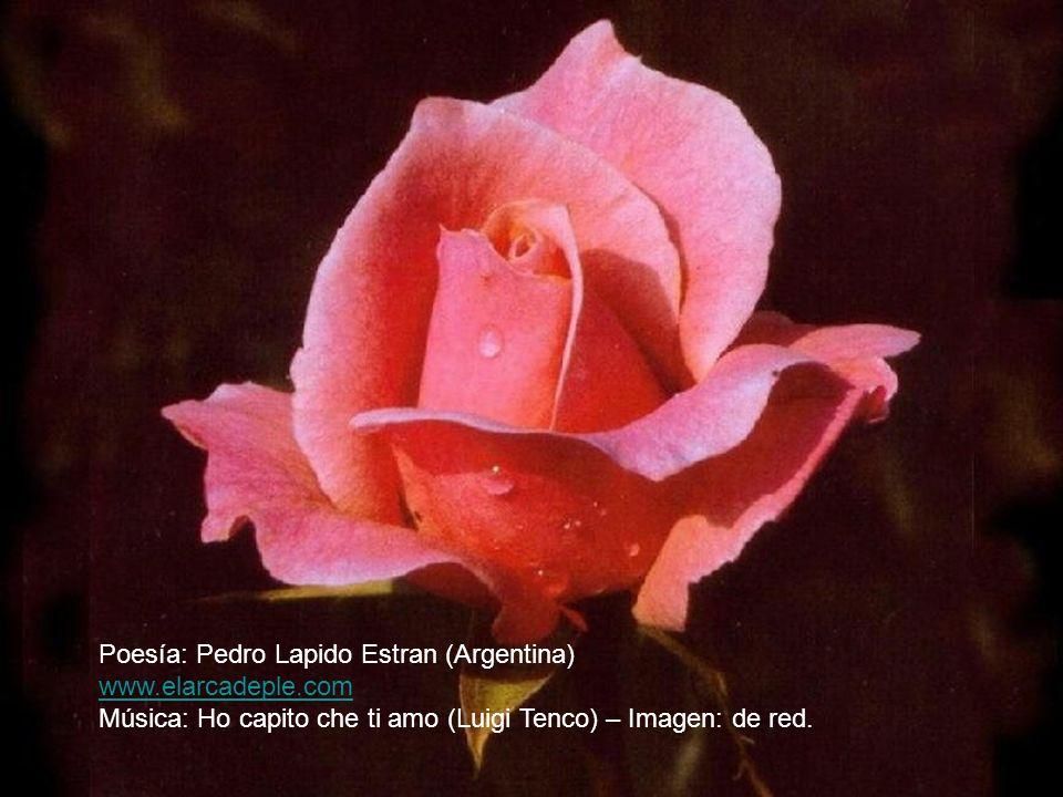 Poesía: Pedro Lapido Estran (Argentina)