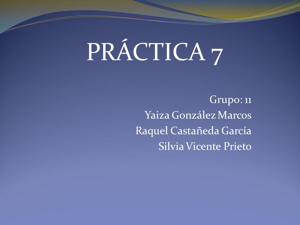 PRÁCTICA 7 Grupo: 11 Yaiza González Marcos Raquel Castañeda García